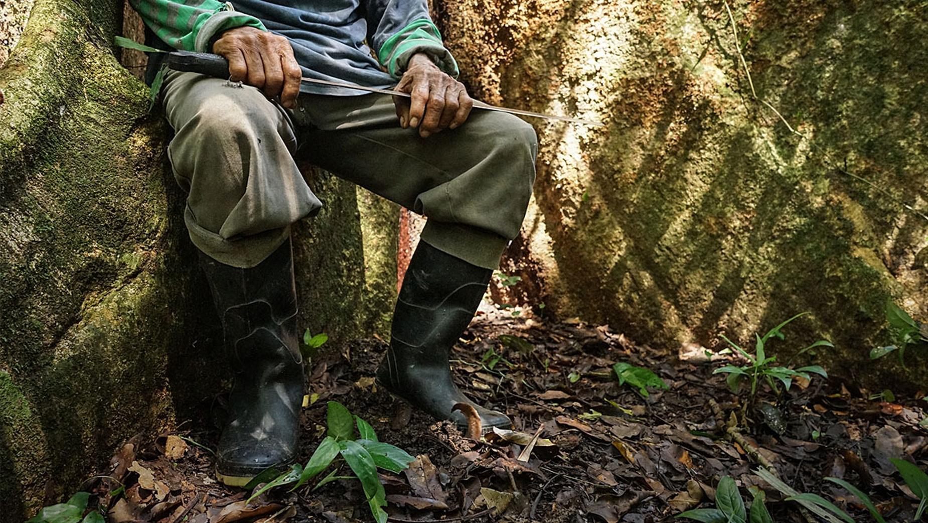 ALERTA. El año pasado se incrementaron las muertes de defensores ambientales en todo el mundo.