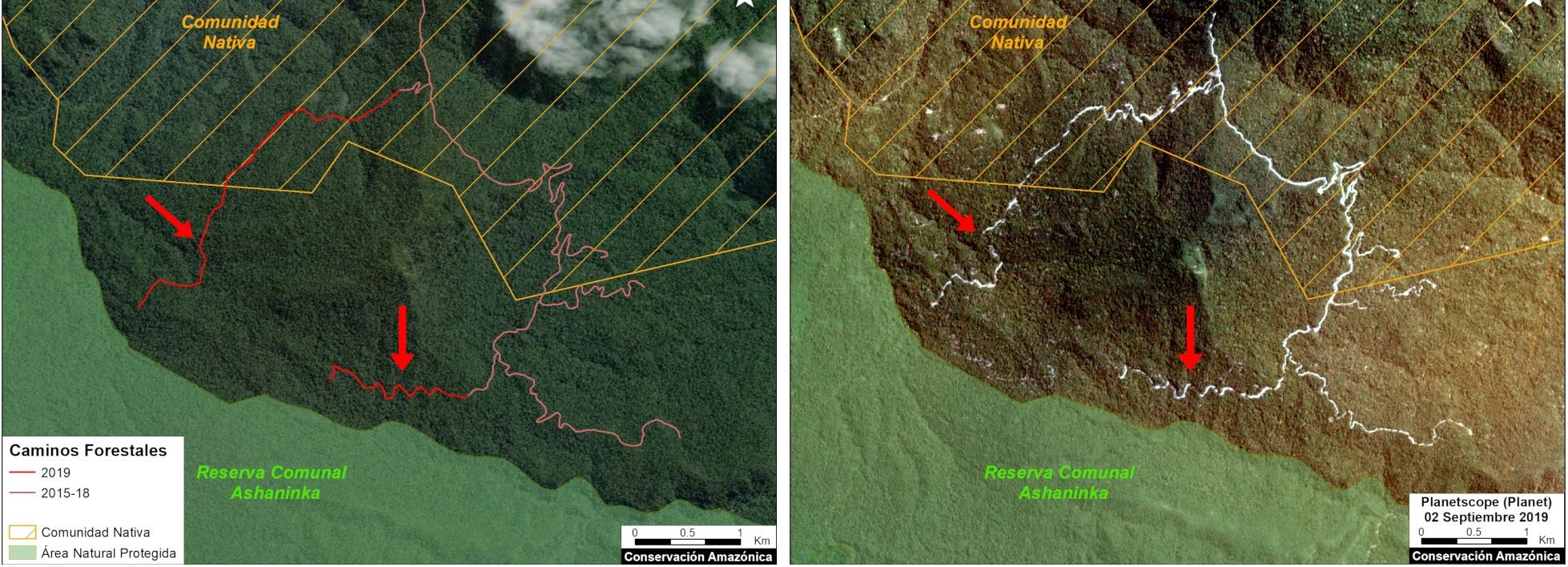 Camino Forestal Reserva Comunal Asháninka MAAP