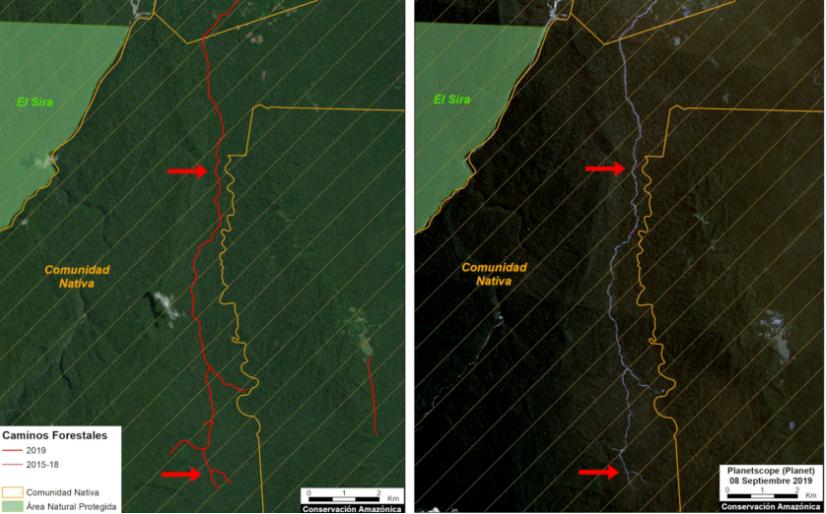 Camino forestal que recorre las comunidades nativas de Nuevo Paraíso y Fernando Sthal