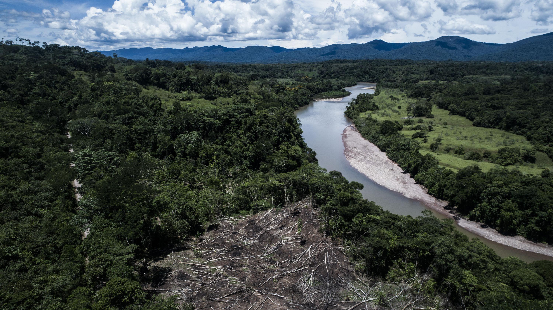 Cultivos amazonicos_Marco Garro