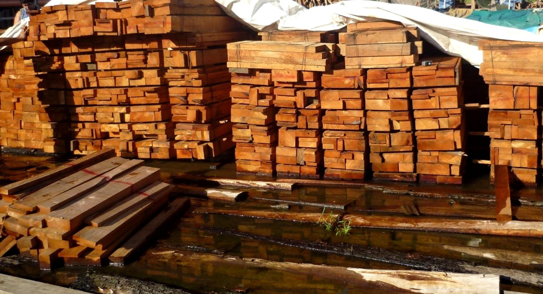 Estados Unidos extiende bloqueo a empresa investigada por tráfico ilegal de  madera | Ojo Público
