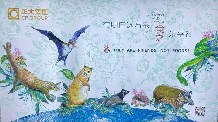 Prohiben comer animales silvestres en la ciudad china de Shenzhen
